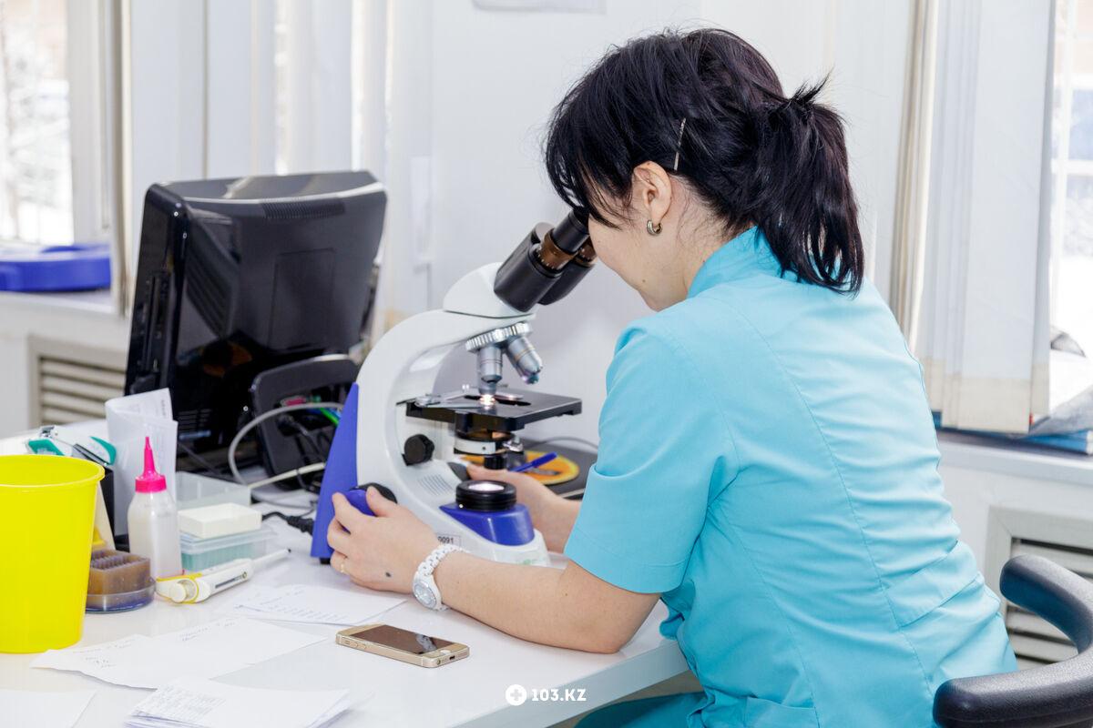 Галерея Лаборатория и медицинский центр «Med Lab экспресс (Мед лаб экспресс)» - фото 1559483