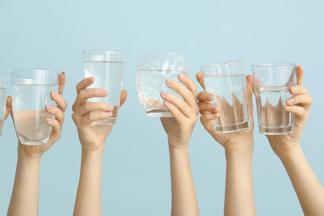 Пить или не пить? Каквода помогает нашему организму